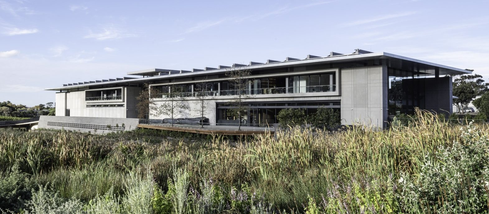 dhk's design for Norval Foundation displays and protects art while maximising views of Cape Town's natural landscape